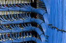 Wiring loom for data cables